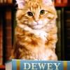 Kütüphane kedisi Dewey