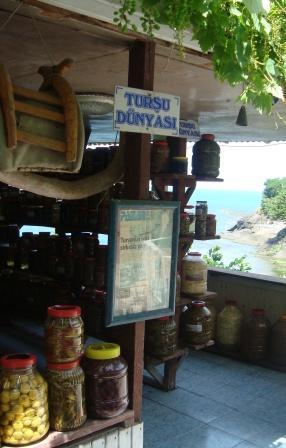 tursu-dunyasi