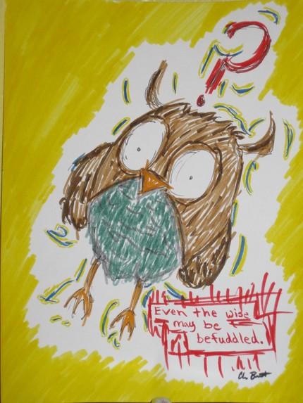 wisw-owl