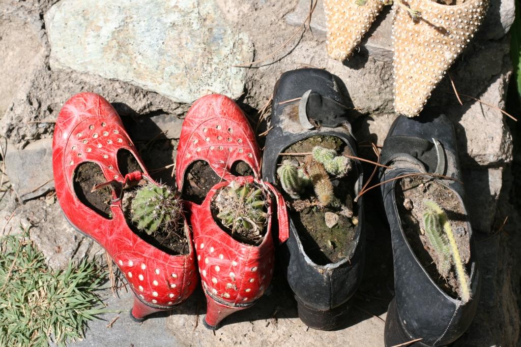 Şirince, ayakkabı içine çiçek ekmek